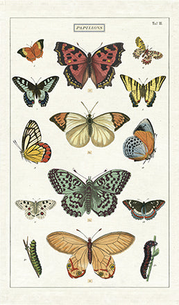 Cavallini & Co. Butterflies Cotton Tea Towel