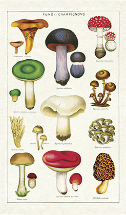 Cavallini & Co. Mushrooms Cotton Tea Towel