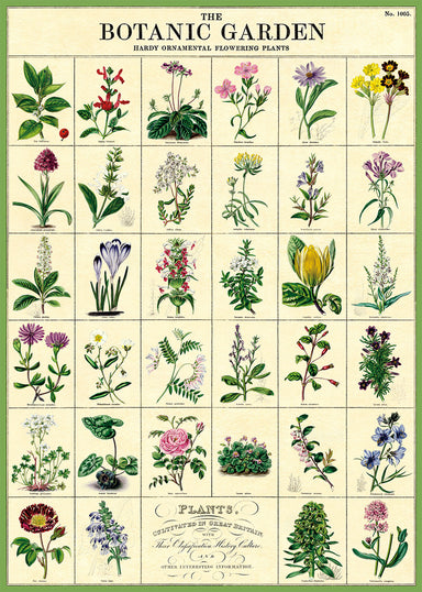 Cavallini & Co. Botanic Garden features images arranged in a grid pattern, with scientific names below each one. Use it for wrapping a gift, as a poster, or frame it for a beautiful print.