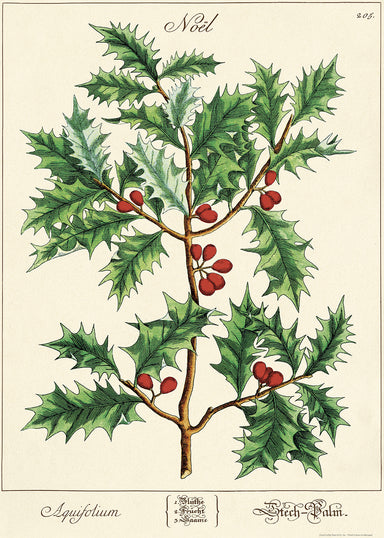 Cavallini & Co. Holly Sprig Decorative Wrap