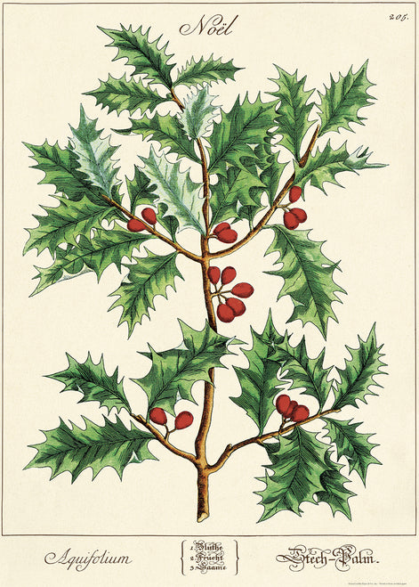 Cavallini & Co. Holly Sprig Decorative Paper