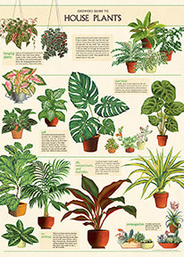 New for 2020- House Plants decorative wrap. This is a truly multi-functional wrap. The poster is a guide to growing, with general instructions on hanging plants, fertilizers, soil, temperatures, and pruning.