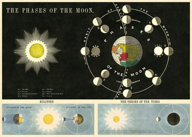 Cavallini Phases of the Moon Decorative Wrap features a vintage drawing of the moon's phases.