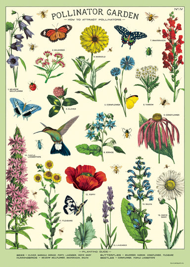 Cavallini & Co. Pollinators Decorative Wrap