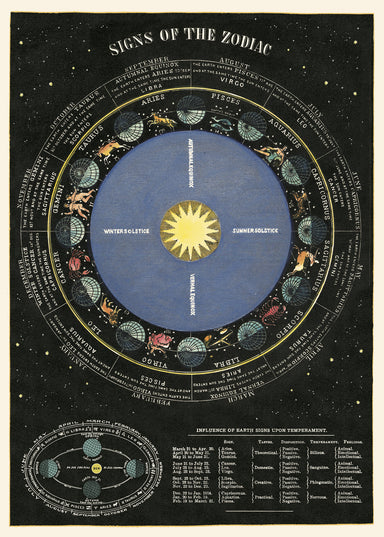 Zodiac Chart Decorative Wrap is a detailed vintage chart of the zodiac. Twelve months of the zodiac adorn this wrap sheet, with beginning and ending dates of each, details on signs, and locations of stars.