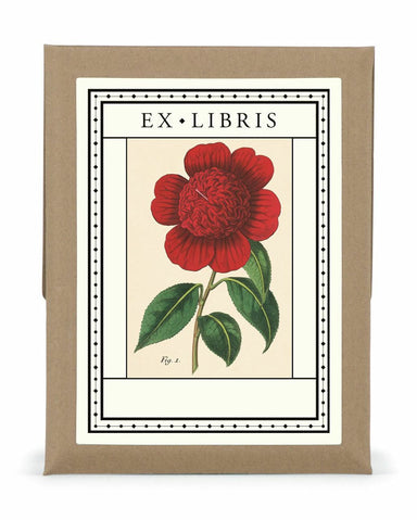 Botanica bookplates feature a vintage botanical image from the Cavallini archive. Bookplates are made from acid-free, adhesive paper stock.