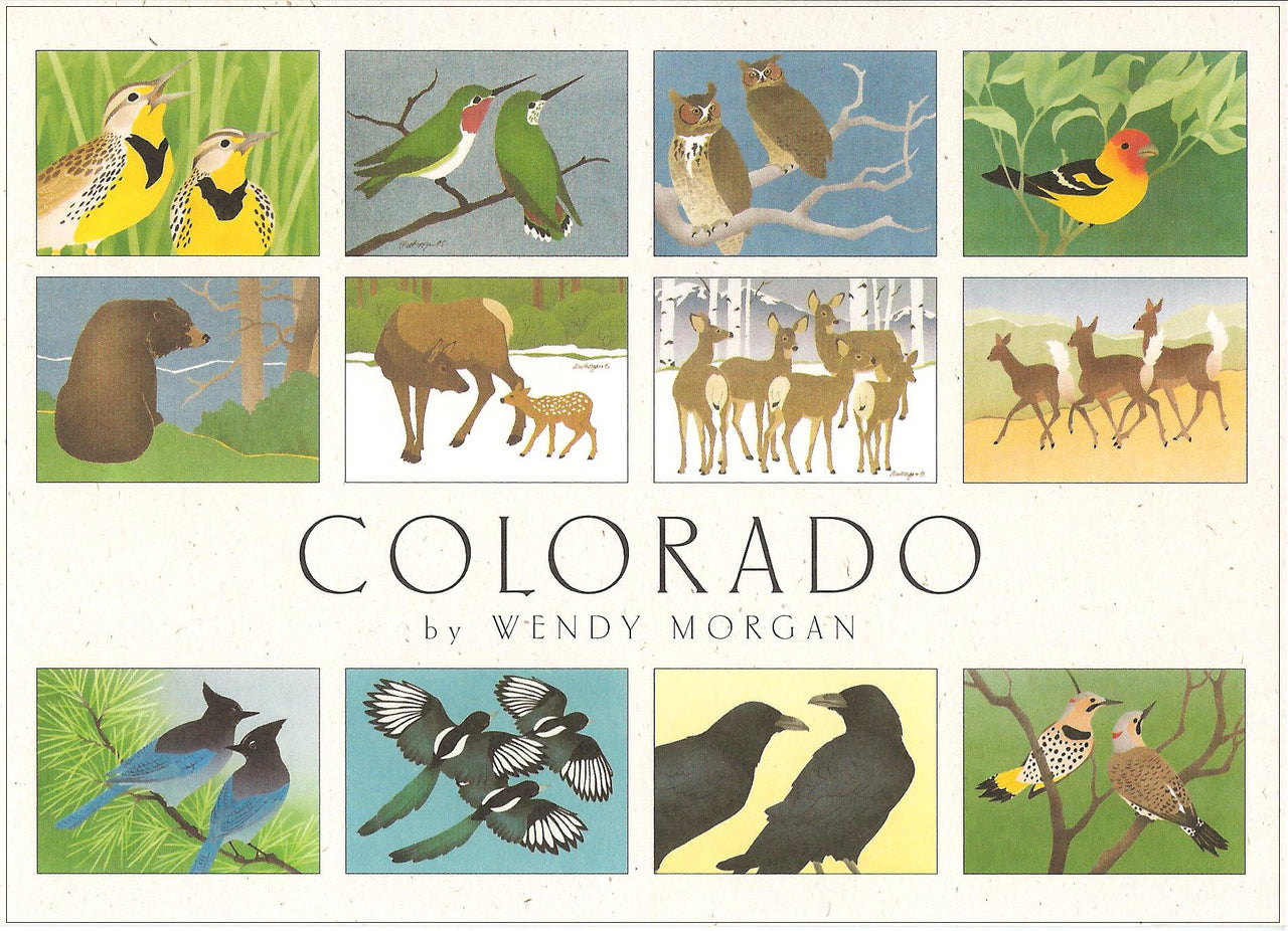 Crane Creek Graphics Colorado notecard folio features lively and bright forest creatures from the Colorado mountains. Inside you will find meadowlarks, hummingbirds, tanagers, bear, deer, and still more birds.