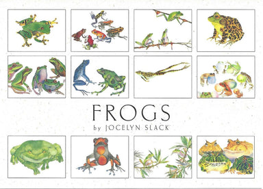 Crane Creek Graphics Frogs in the set include the rainforest tree frog, poison arrow frog, american bullfrog, horned frog, and singing frog, plus more.