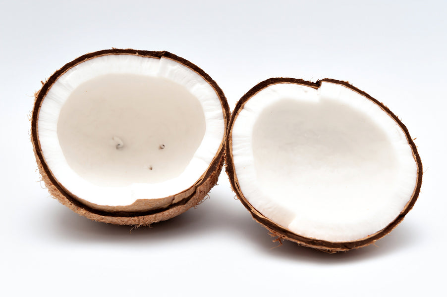 How Coconut Oil Can Be Used to Support Your Immune System