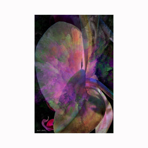 """Abstract Orchid"" is a digital photograph digital art by Texas artist Mark Holly 