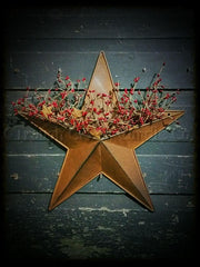 Rusty Tin Star Pocket with Pip Berries