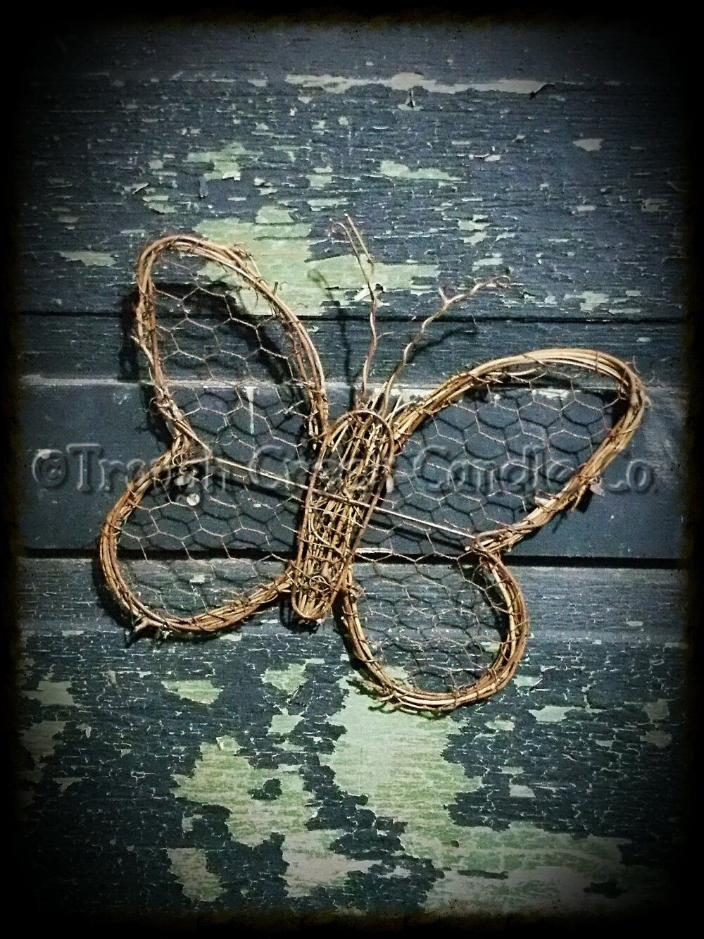 Grapevine Butterfly with Chicken Wire