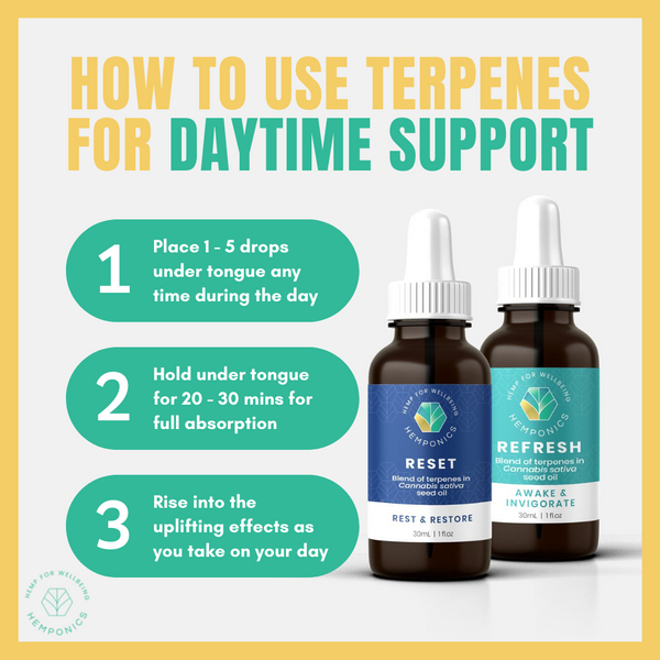 how to use terpenes for daytime support