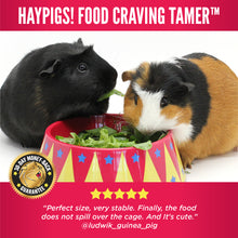 Load image into Gallery viewer, HayPigs!® Food Craving Tamer™ - Food Bowl