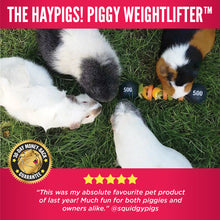 Load image into Gallery viewer, HayPigs!® Piggy Weightlifter™ - Vegetable Kebab Maker