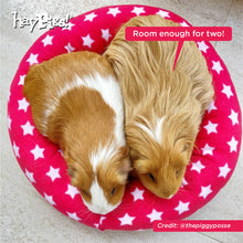 Load image into Gallery viewer, HayPigs!® Piggy Crash Mat™ - Fleece Bed