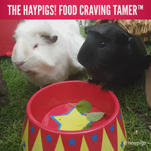 Load and play video in Gallery viewer, HayPigs!® Food Craving Tamer™ - Food Bowl
