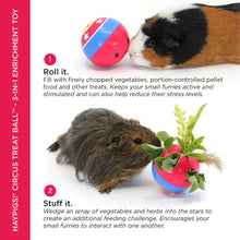 Load image into Gallery viewer, HayPigs!® Circus Treat Ball™ - 3-in-1 Enrichment Toy