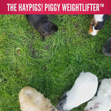 Load and play video in Gallery viewer, HayPigs!® Piggy Weightlifter™ - Vegetable Kebab Maker