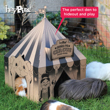 Load image into Gallery viewer, HayPigs!® 100% Timothy Hay 2Kg with 'Pig Top' Playhouse™