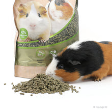 Load image into Gallery viewer, BUNDLE OFFER 3: HayPigs!® Junior Food Tamer™ + HayPigs!® Circus Treat Ball™ + Marriage's Guinea Pig Pellets 2kg