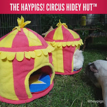 Load and play video in Gallery viewer, HayPigs!® Circus Hidey Hut™ - Fleece Hidey Hut
