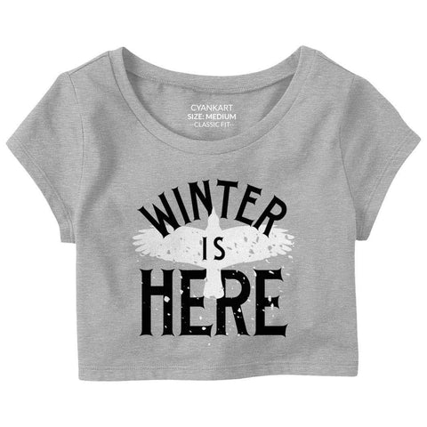 Winter Is Here Crop Top