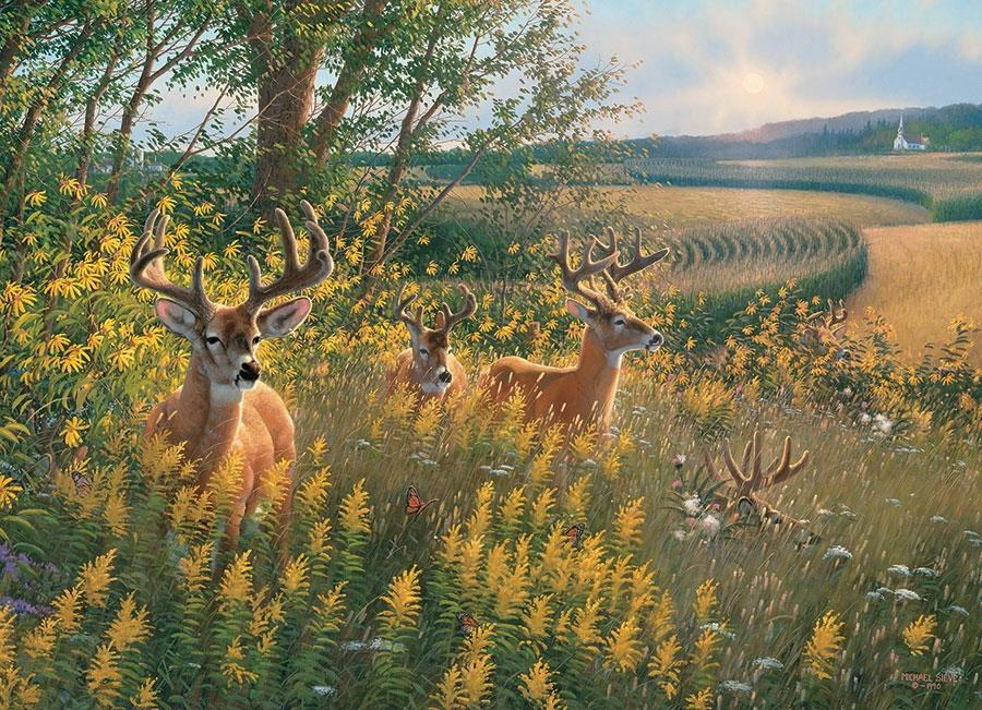 Summer Deer @ https://www.jestersfunfactory.net/