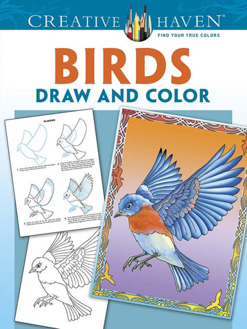 Birds to Draw and Colour