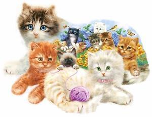 A Litter of Kittens 1000pc