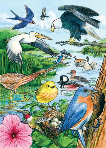 North American Birds Habitat Tray Puzzle