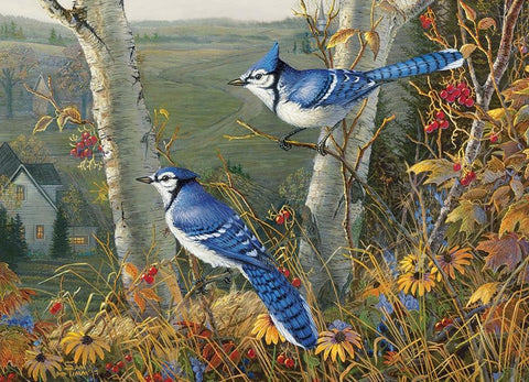Blue Jays 1000pc