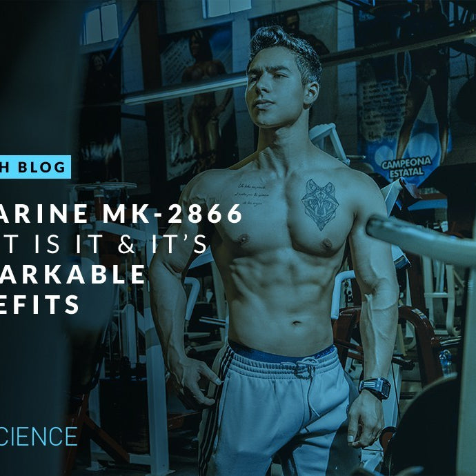 OSTARINE MK-2866_WHAT IT IS & ITS REMARKABLE BENEFITS