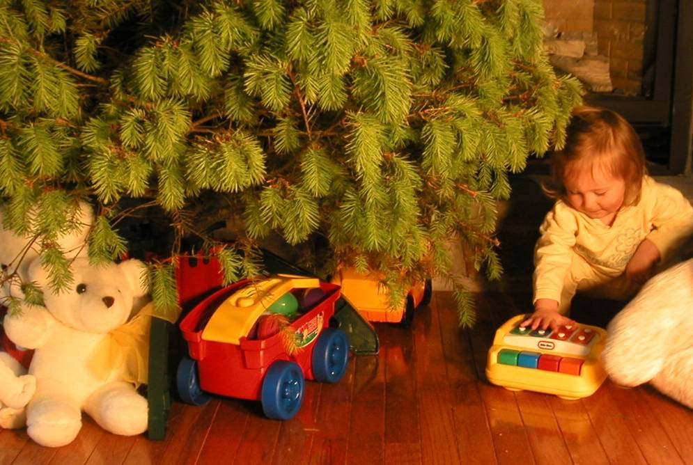 The Omega Tree Stand Omega Store