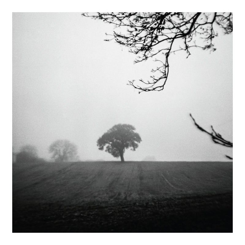 Stock, Essex - Limited Edition print - Manuel Sechi Fine Art Photography