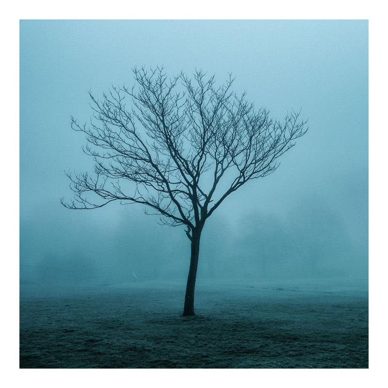 Ingatestone, Essex - Limited Edition print - Manuel Sechi Fine Art Photography