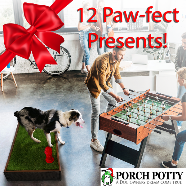 12 PAW-FECT PRESENTS FOR YOUR DOG