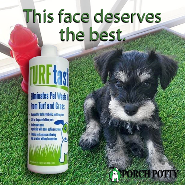 TURFtastic: the first enzymatic cleaner specially formulated for dog potties