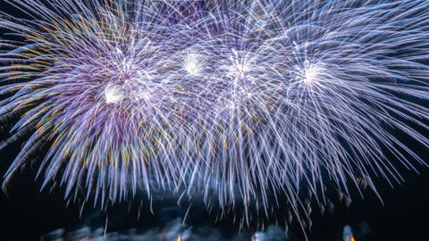 Dogs and Fireworks: What Can You Do?
