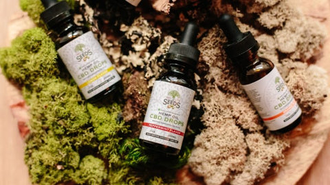 Your Guide to CBD Dog Treats