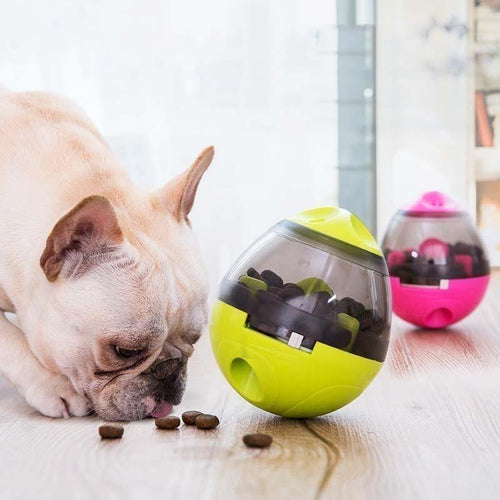 IQ Ball For Dogs - San Frenchie