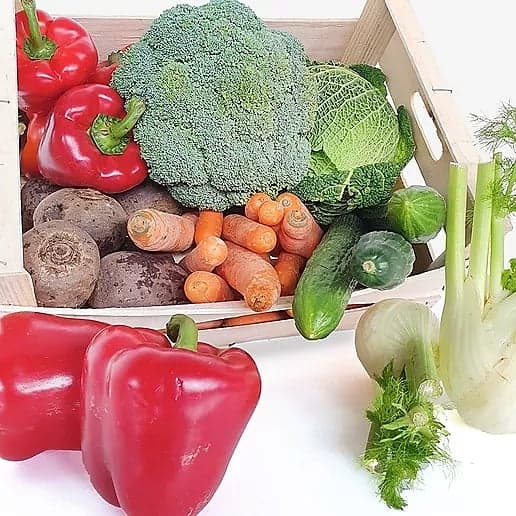 Basket of vegetables