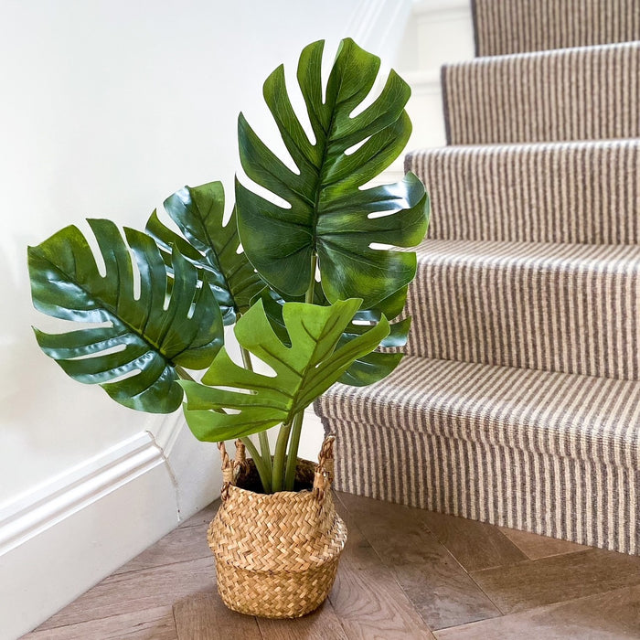 Faux Monstera in Rattan basket