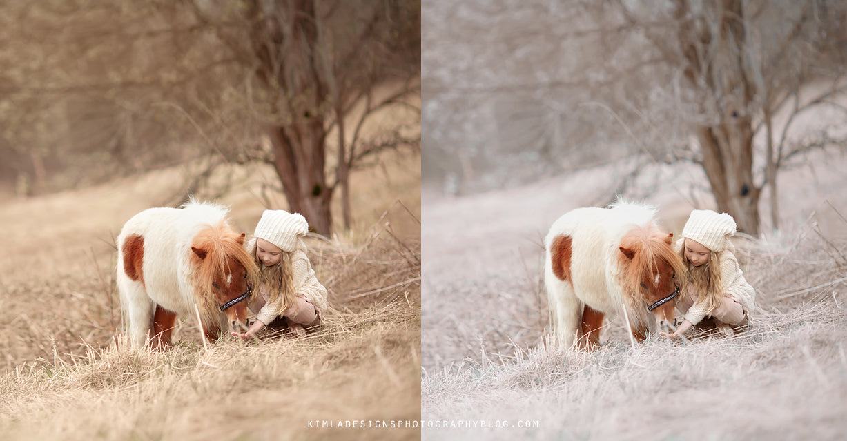 Canine - How to Create White Winter Effect