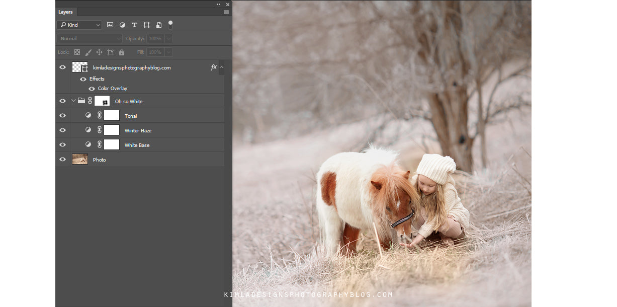 Animal - How to Create White Winter Effect