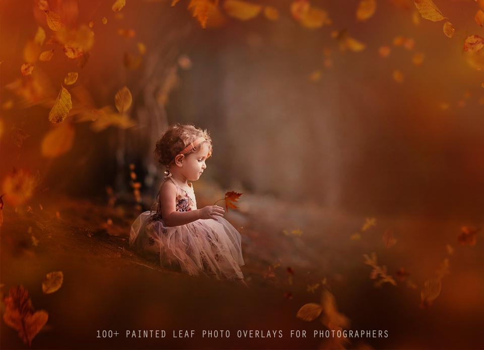 100+ Painted Leaf Photo Overlays - Photoshop Overlays, Digital Backgrounds and Lightroom Presets