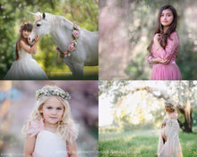 Load image into Gallery viewer, Artistic Blur Photo Overlays - Photoshop Overlays, Digital Backgrounds and Lightroom Presets
