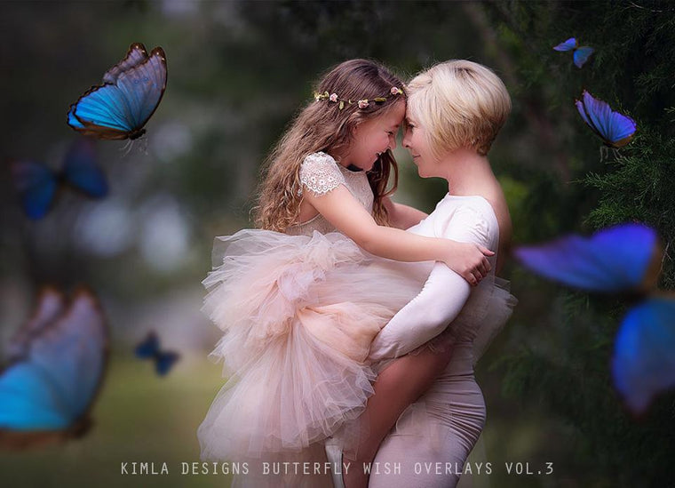 Butterfly Wish Photo Overlays vol.3