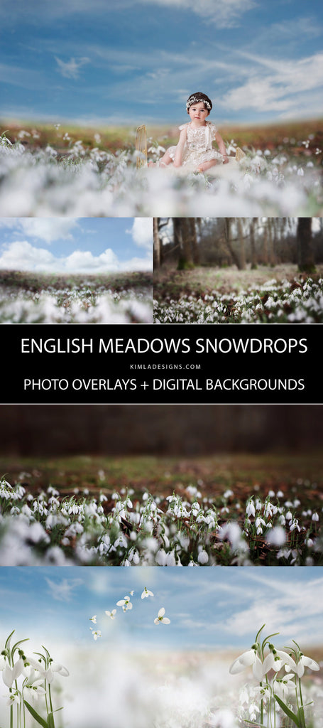 Snowdrops Photo Overlays + Free Gift