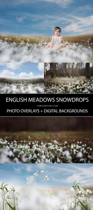 Snowdrops Photo Overlays + Free Gift - Photoshop Overlays, Digital Backgrounds and Lightroom Presets